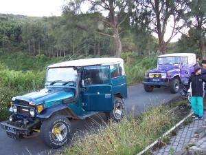 Kendaraan sewa ke lautan pasir Bormo dan Puncak Pananjakan